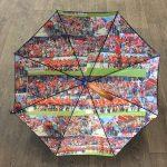 Les parapluies Piganiol sont en vente en ligne !